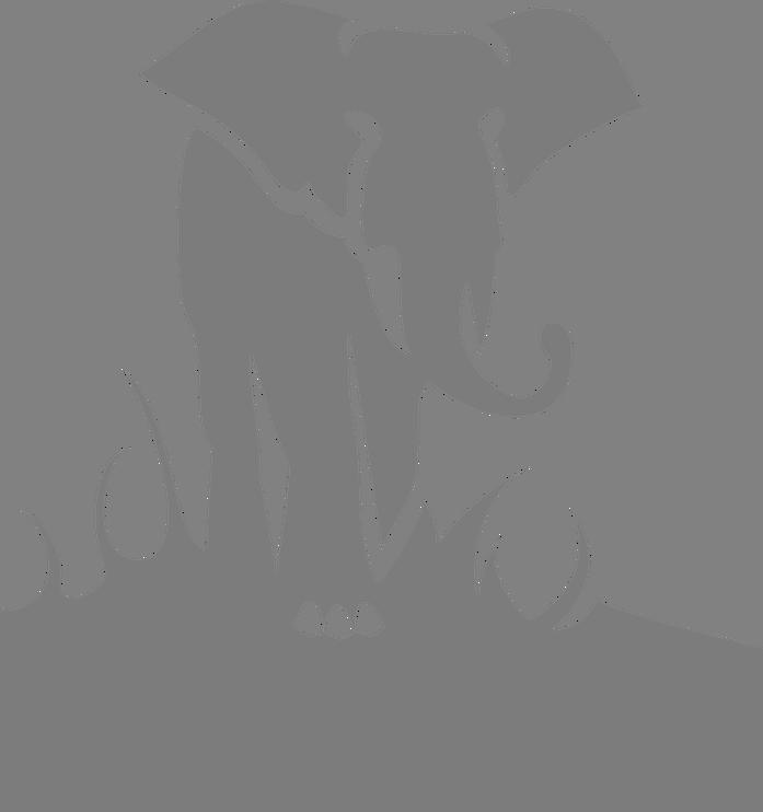 Hvad skal vi med den elefant…?