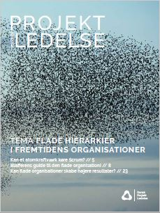 Flade organisationer i fremtiden